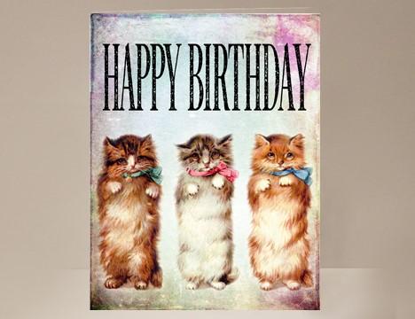 Cat Birthday Card Yesterdays Best