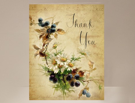 Thank You card wholesale Berries and Daisies  |  Yesterday's Best