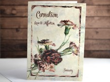 View Flower of the month Card Carnation January