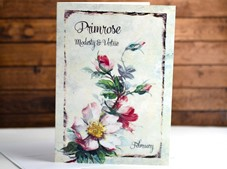 View Flower of the month Card Primrose February