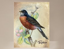View Robin Card