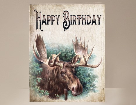 Stupendous Moose Birthday Card Yesterdays Best Personalised Birthday Cards Petedlily Jamesorg